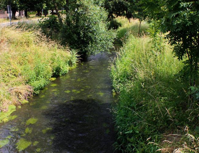 Flutgraben Goldbach