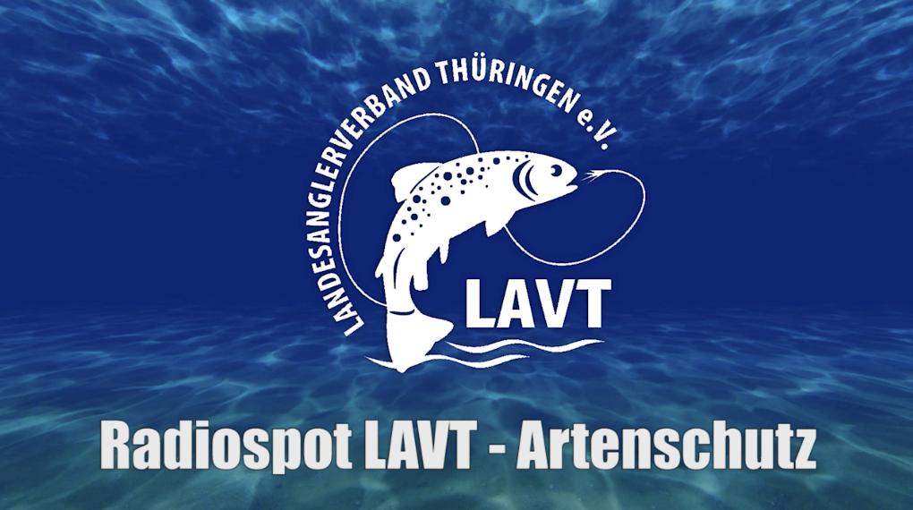 PODCAST #2 Situation unserer heimischen Fischarten in Thüringen – Radiokampagne des LAVT