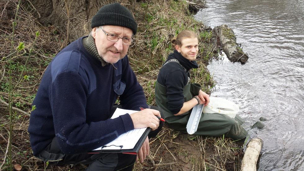 Wissenschaftlicher Nachweis der Gefährdung unserer heimischen Fischfauna durch einen zu hohen Kormoranbestand