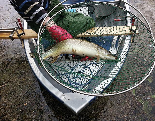 Ausbildung der Elektro - Fischer des LAVT