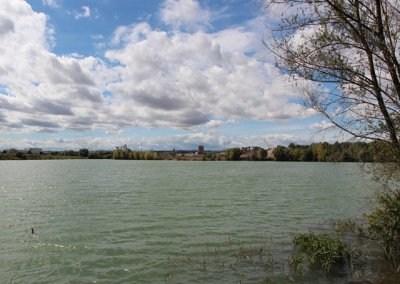 """Storchensee (""""Die Schwemme"""")"""