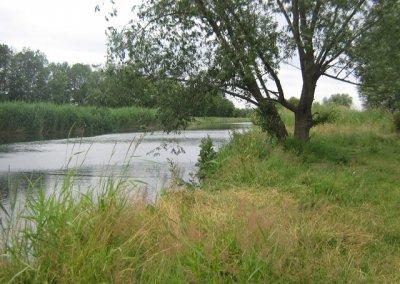 Unstrut in der Gemarkung Schwerstedt