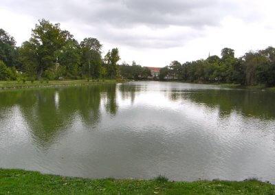 59. Großer Parkteich Sondershausen